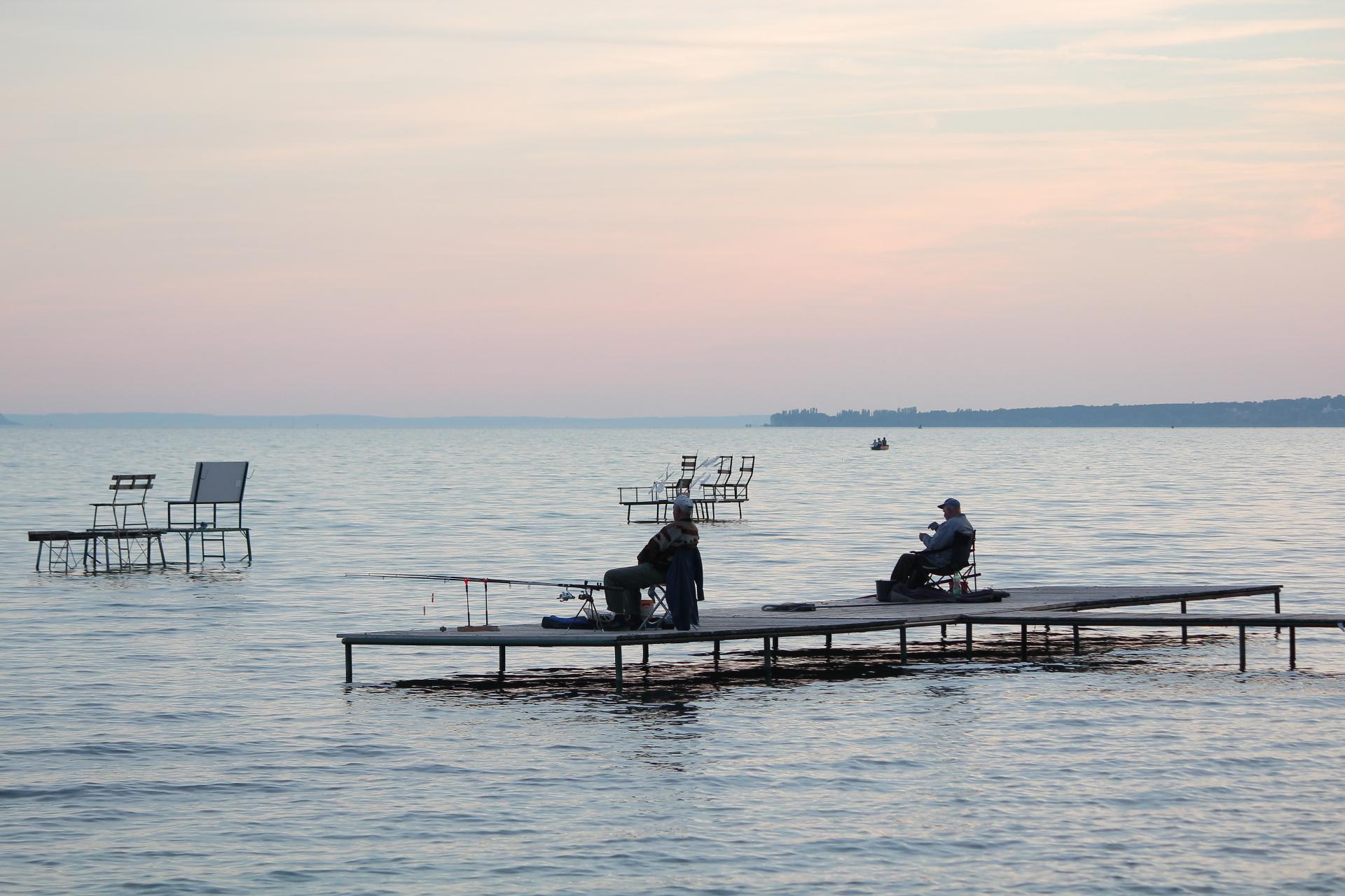 """""""Rövidesen el kell dönteni, hogy mit akarunk a Balatontól: úszómedencét vagy természetes élővilágot"""" – interjú dr. Pálffy Károllyal, a Balatoni Limnológiai Intézet kutatójával"""